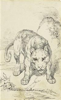 nach dem raub schleichender tiger (+ junge löwin; 2 works) by joseph simon volmar