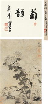 菊石图 (chrysanthemum and stone) by wang guxiang