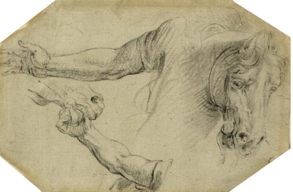 studienblatt mit armen die ein pferd halten study by sir peter paul rubens