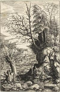 landschaft mit der weide by hans sebald lautensack