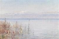 au bord du lac by sophie von niederhausern