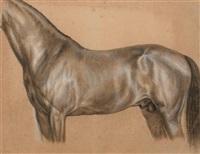pferdestudie by ludwig (georg l.) vogel