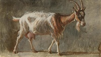 goat before a grey wall by jean daniel huber