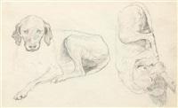 studie zu einem ruhenden jagdhund by jacques-laurent agasse