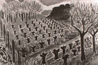 vineyards at lilienthal ranch, cloverdale by frederic stacpoole