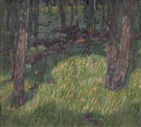 waldlichtung by martin lauterburg