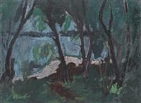 lac de neuchâtel by gérald comtesse