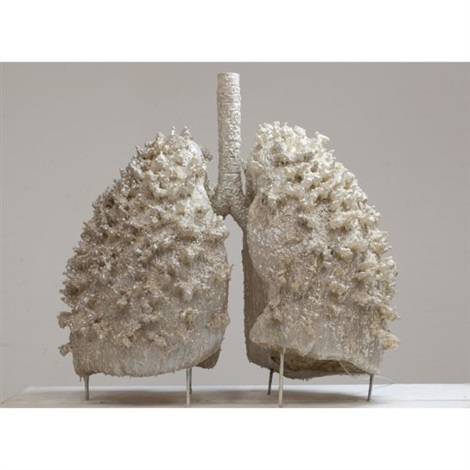 breathing system lungs by ma han