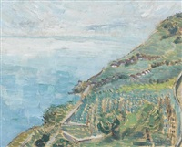 ansicht des lavaux by william metein