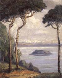 blick auf den bielersee und die alpen by emile alder
