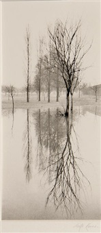 reflection, richmond, surrey, england by michael kenna