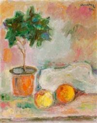 stilleben mit äpfeln und pflanze by vanadur (yervant der mossighian)