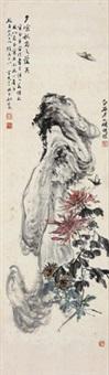 菊石蝴蝶 by yao shuping