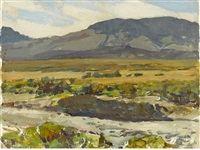 desert study by frank tenney johnson