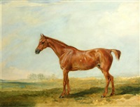 sir richard sutton's chestnut hunter by james ward
