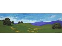 wildflowers of eldorado hills by jesse don rasberry