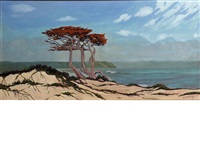 monterey cypress by jesse don rasberry