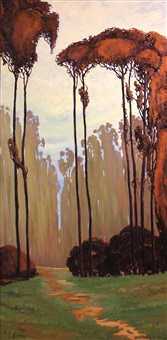 path through a eucalyptus grove by jesse don rasberry