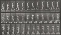 man ascending plank (from the animal locomotion series (plate 74)) by eadweard muybridge
