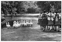 hungary by elliott erwitt