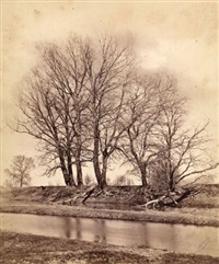 tree and river landscape by ludwig angerer