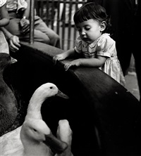 girl meets geese in the children's zoo, bronx zoo, new york by esther bubley