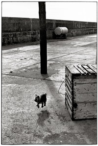ballycotton, ireland by elliott erwitt