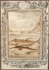 thunfische by johann melchior füssli