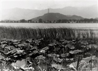 views of peking, china (12 works) by heinz von perckhammer