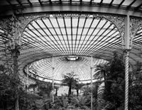 interior view of kibble palace, glasgow (botanical gardens) by stefan koppelkamm
