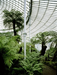 kibble palace, glasgow by stefan koppelkamm
