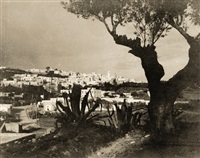 view of sidi bou saïd seen from the holy hill by rudolf lehnert