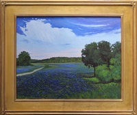 texas bluebonnets by jesse don rasberry