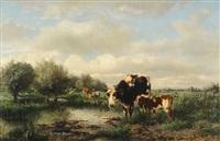 kühe auf der weide by albertus gerardus bilders