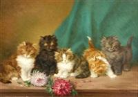 fünf junge kätzchen by daniel merlin
