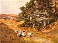 schottische landschaft mit schafen by george w. aikman