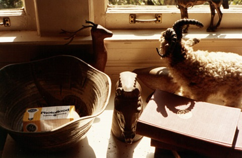 untitled still life from faulkners mississippi by william eggleston