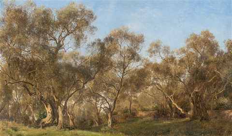 olivenhain by janus andreas barthotin la cour