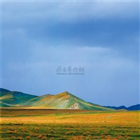 the strawyellow scenery in august by bian kai