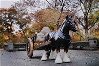 pegasus in central park by neale m. albert