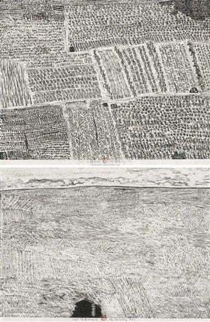 庄稼地有草的地方 (一组两件) cropland grasslang2 works by xu bing