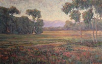 the santa ynez valley in bloom by william dorsey