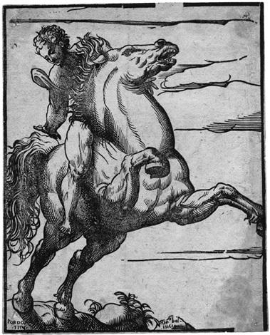 reiter mit sich aufbäumendem pferd after pordenone by niccolo boldrini