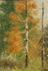 mount tallac; dead pine, lake tahoe; chinatown, san francisco before the fire of 1906 (group of 3) by edwin deakin