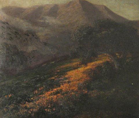 poppies on a hillside with mount tamalpais beyond by jules r mersfelder