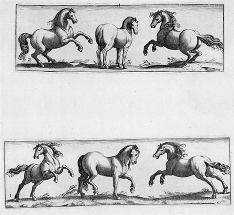quadrupedum icones vivae 16 works on 8 sheets wtitle after antonio tempesta by johann theodor de bry