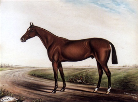 portrait of the racehorse eole by harry lyman