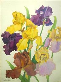iris 23 (+ iris 24; 2 works) by richard bolingbroke