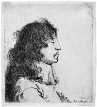 brustbildnis eines jungen mannes mit langem haar by jan lievens