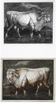 wasser trinkender stier im wasser (after johann heinrich roos; + etching of same, lrgr; 2 works) by johann friedrich morgenstern